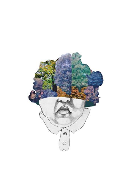 Illustratie Uitdrukking 'bomen Bos Zien'